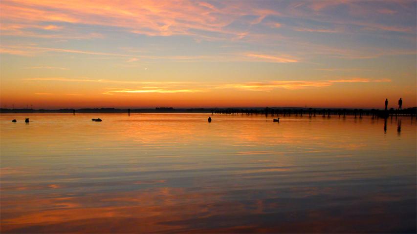 Lake Dümmer at sunset