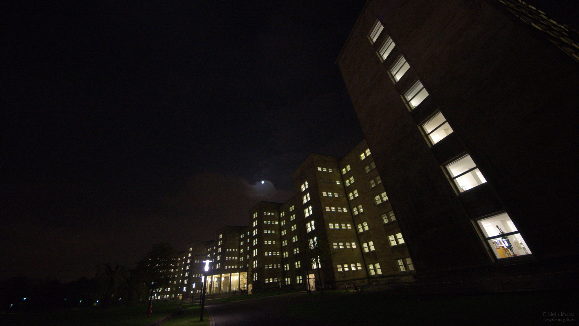 Universität Frankfurt, falling lines