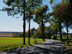 on the road in the Sauerland